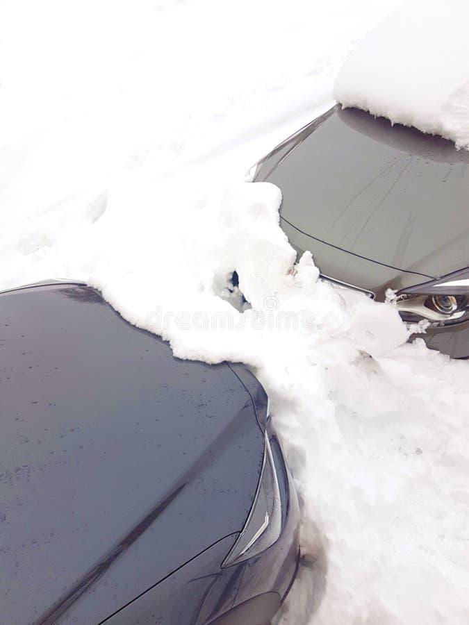 2 серых автомобиля похороненного под снегом стоковое фото rf