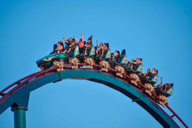 Славные люди имея американскую горку Mako потехи изумляя на тематическом парке 2 Seaworld стоковое фото