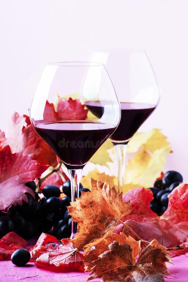 Сладкое португальское красное вино в больших стеклах, натюрморт осени с красными и желтыми листьями на розовой предпосылке, выбор стоковое изображение