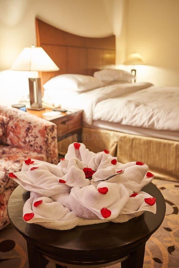Сложенное полотенце как животное на времени кровати стоковая фотография rf