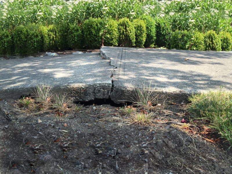 Сломленный тротуар цемента стоковые изображения rf