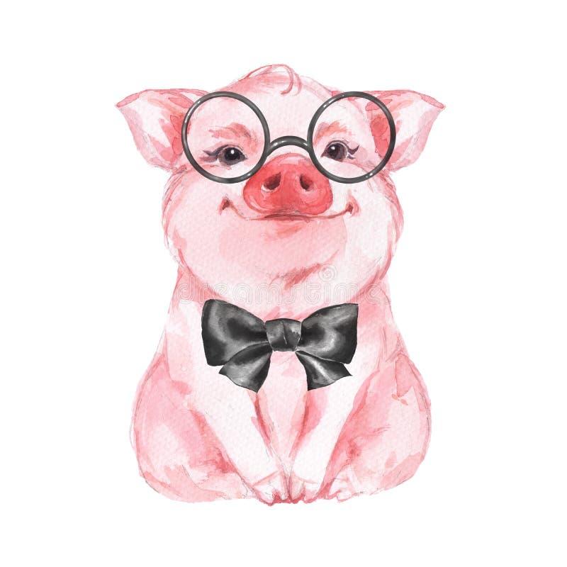 смешная свинья Изолировано на белизне иллюстрация штока