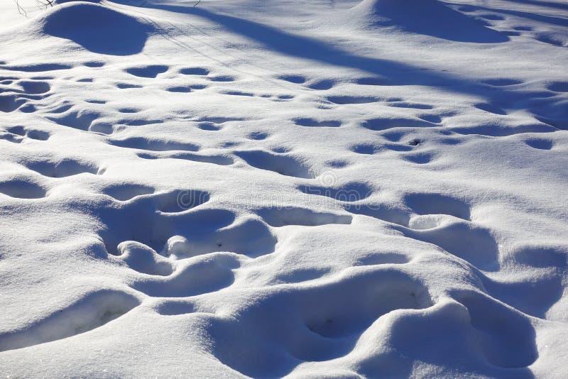 Смещения и следы ноги снега в снеге день солнечный зима белизны снежинок предпосылки голубая стоковая фотография
