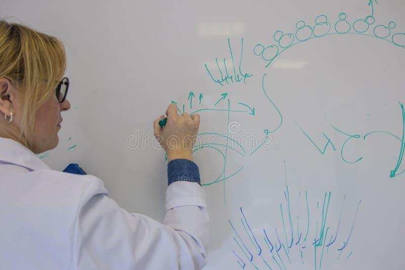 Специалист на расширении ресницы основы профессии и практика Закройте вверх, селективный фокус стоковое изображение