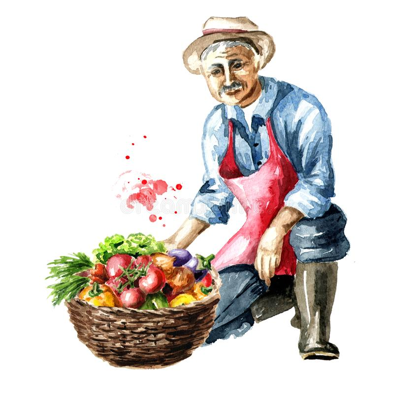 Старший фермер сидит на одном колене с корзиной вполне свежих овощей Иллюстрация акварели нарисованная рукой, изолированная на бе иллюстрация вектора