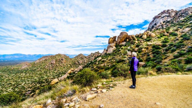 Старший hiker женщины наслаждаясь взглядом долины Солнца и горной цепи McDowell осмотренных от следа большого пальца руки Том стоковая фотография rf