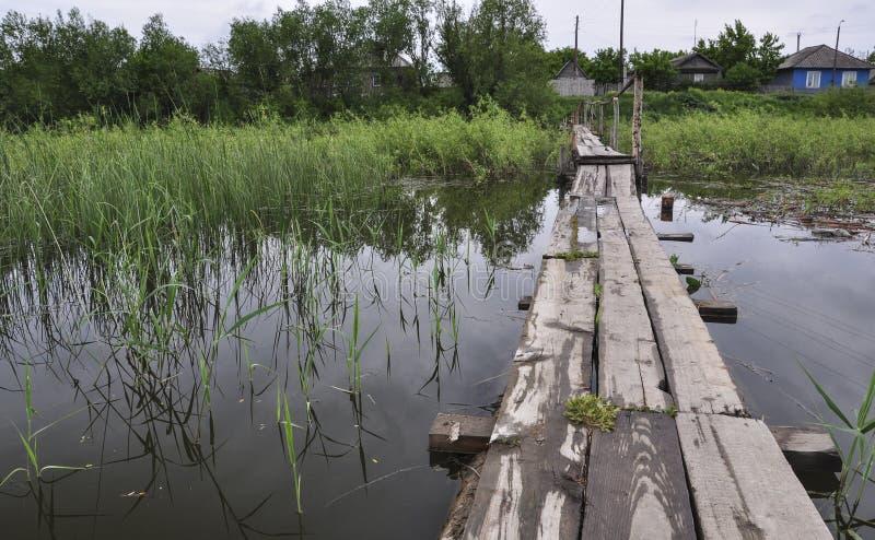 Старый небольшой деревянный мост через перерастанное реку в деревне стоковые изображения rf