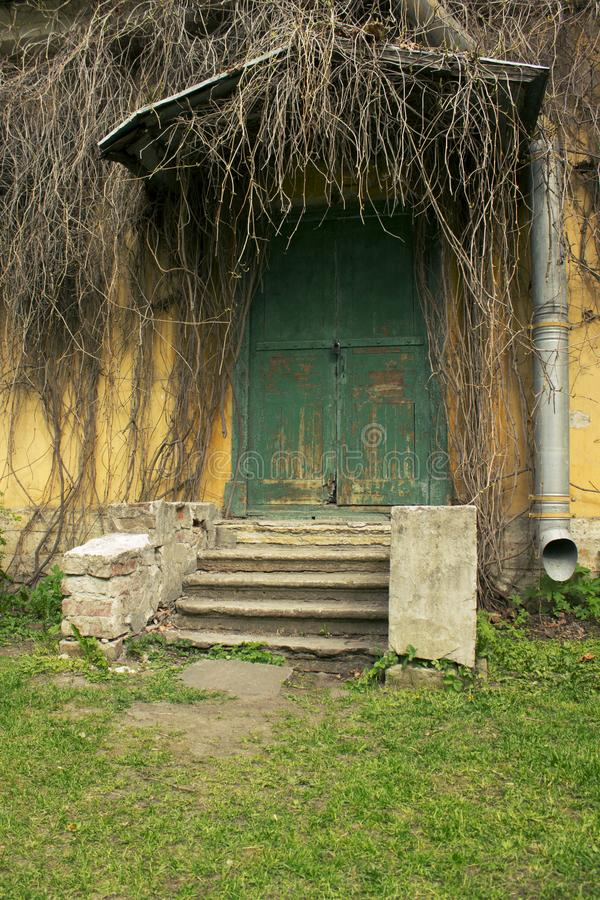 Старое загубленное крылечко домом с деревянной дверью и старым плющом стоковое изображение rf