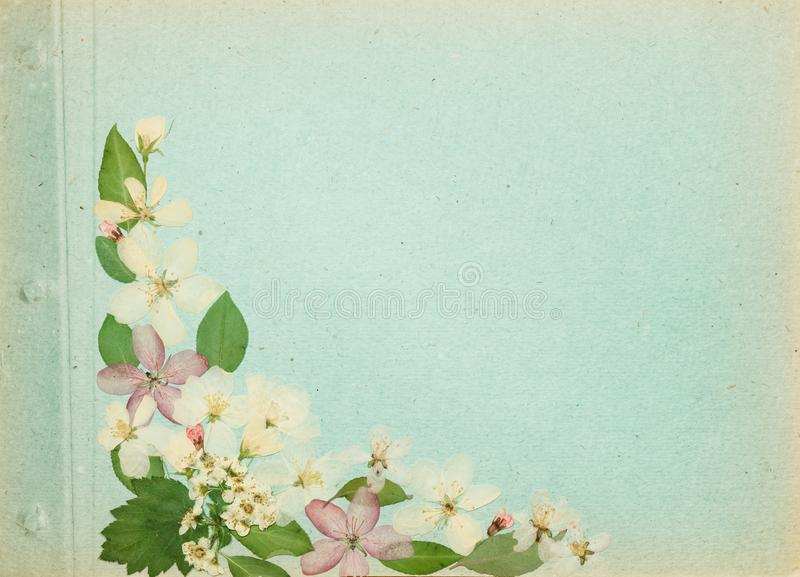 Страница от старого фотоальбома, scrapbooking элемента стоковые фотографии rf