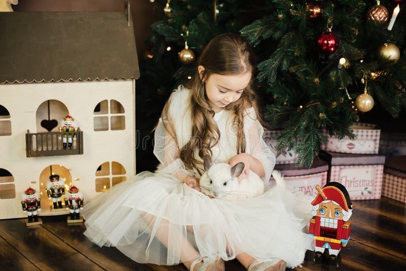 Счастливый китайский Новый Год 2020 год крысы Портрет милой белой шиншиллы на предпосылке рождественской елки стоковые фотографии rf