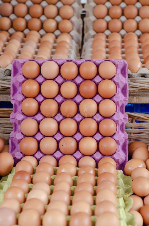 Сырцовые коричневые яйца в коробках яйца коробки стоковая фотография rf