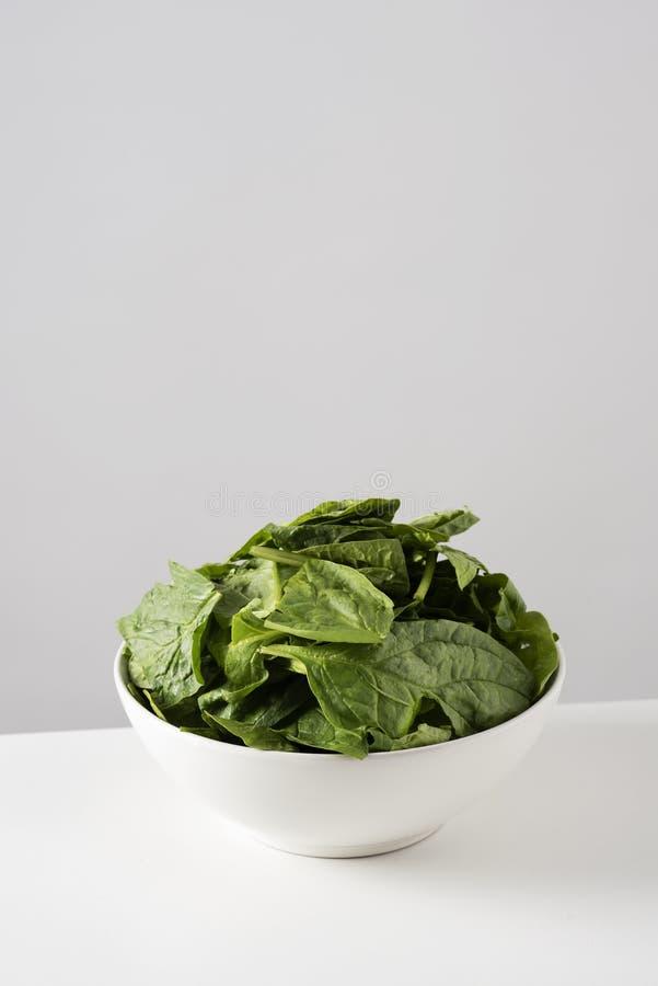 Сырцовые листья шпината в белом шаре стоковые фото