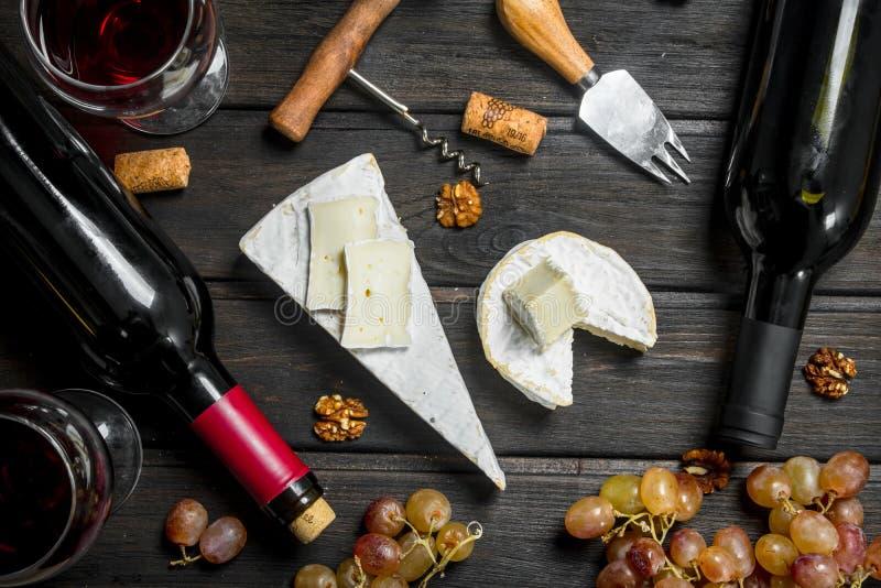 Сыр бри с красным вином, гайками и виноградинами стоковое изображение rf