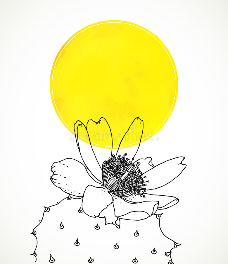 Ð¡ard with botanical drawing of cactus flower. Vector card with yellow watercolor circle and botanical drawing of cactus flower. Template for Mexican vector illustration