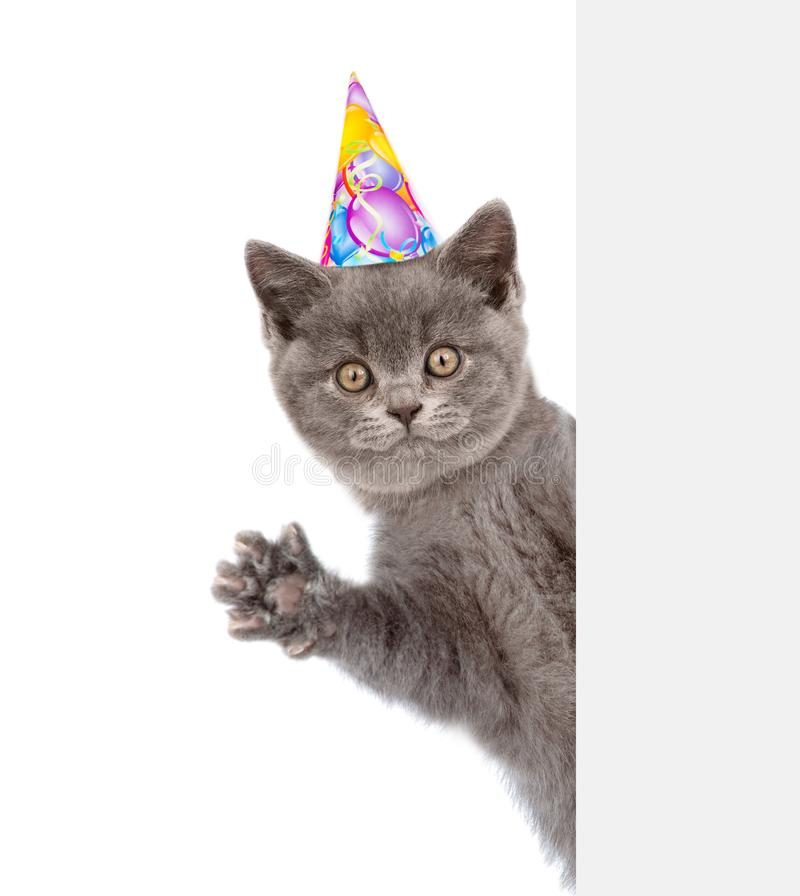 Ð¡at in birthday hat peeks out from behind a banner and waving his paw.  royalty free illustration