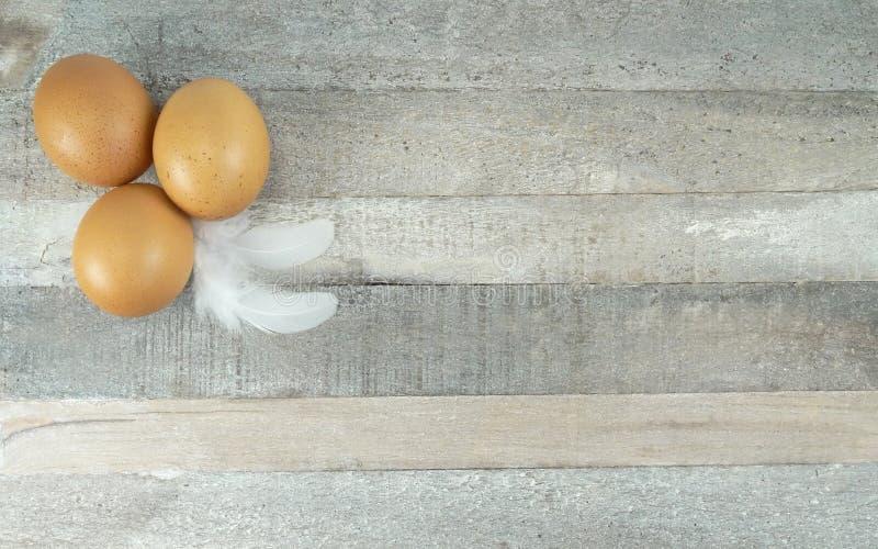 Яйца цыпленка Брауна с пером на деревянной предпосылке стоковые фото