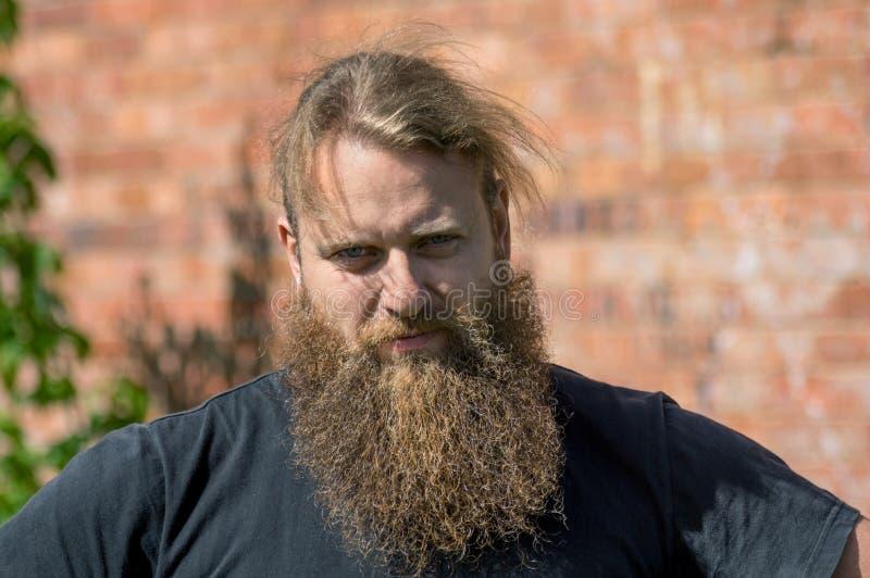 Уживчивый портрет человека с бородой стоковое фото rf