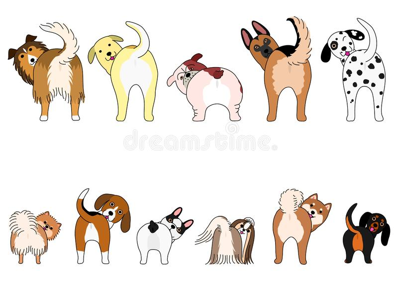 Установите смешных собак показывая их батты иллюстрация вектора