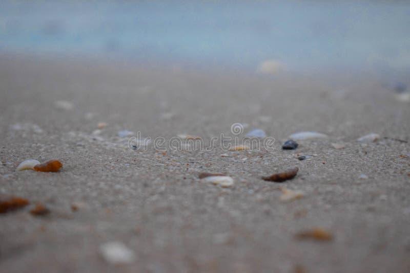 Утесы и небольшие камешки окруженные в песке, который был перед морем подняли на пляж стоковые изображения