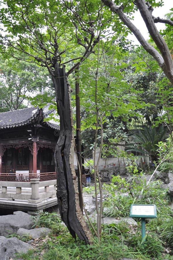 Шанхай, 2-ое может: Живописный ландшафт с дизайном Rockery в известном саде Yu в центре города Шанхая стоковые фотографии rf