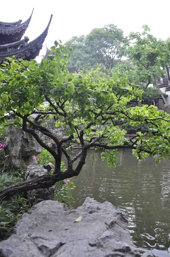 Шанхай, 2-ое может: Ландшафт от известного сада Yu в центре города Шанхая стоковая фотография rf