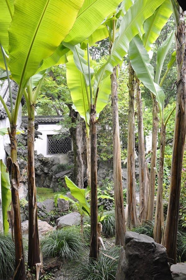 Шанхай, 2-ое может: Ландшафт от известного сада Yu в центре города Шанхая стоковое изображение