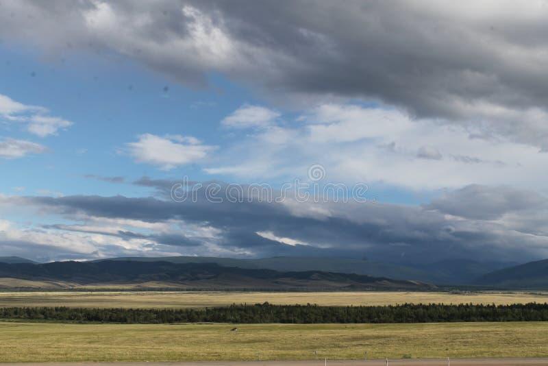 Широкая степь с желтой травой под голубым небом с белизной заволакивает горы Sayan Сибирь Россия стоковая фотография