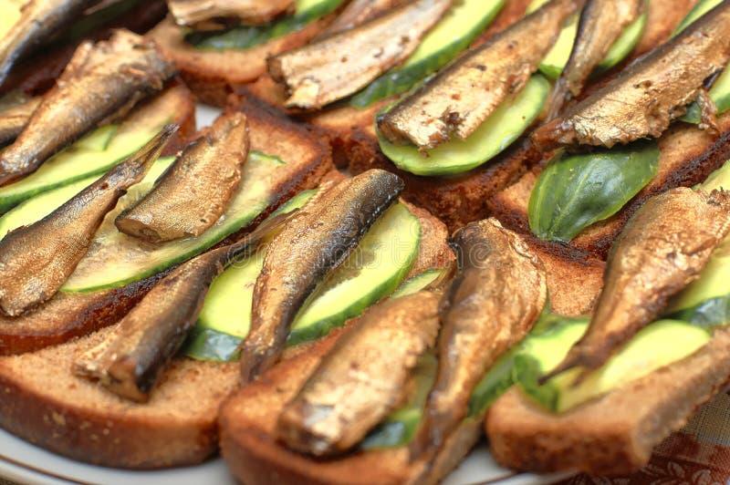 Шпротины с кусками на провозглашанном тост хлебе, концом-вверх огурца стоковое изображение rf