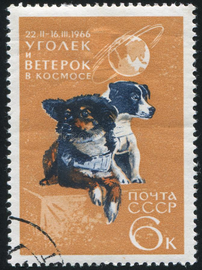 Штемпель почтового сбора стоковая фотография rf