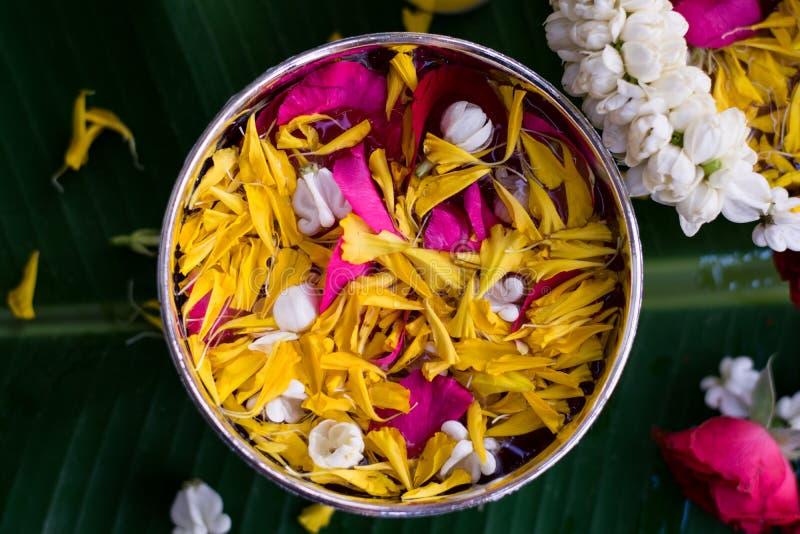 Тайское традиционное для фестиваля Songkran стоковые фото