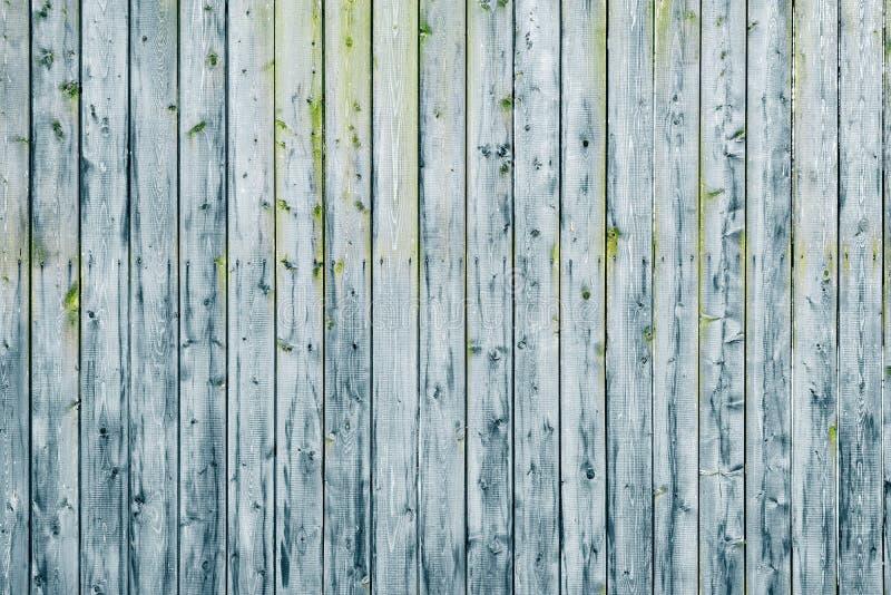 текстура предпосылки старая деревянная стоковые фото