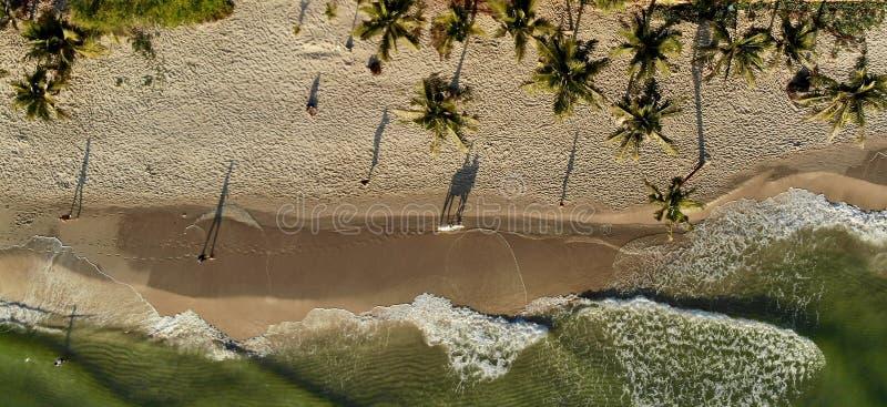 Тени на пляже на восходе солнца стоковые фото