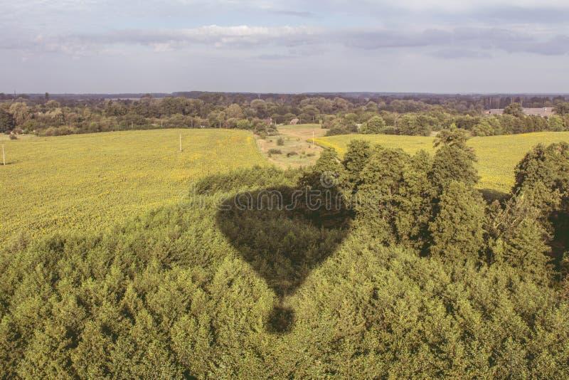 Тень воздушного шара и природы стоковое изображение rf