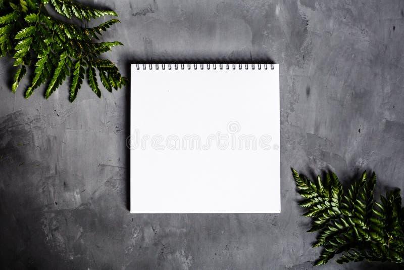 Тетрадь и зеленые листья лежа на серой предпосылке Плоское положение, взгляд сверху установьте текст стоковое изображение rf