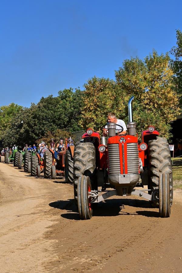 Трактор Massey Ferguson в линии парада стоковая фотография rf