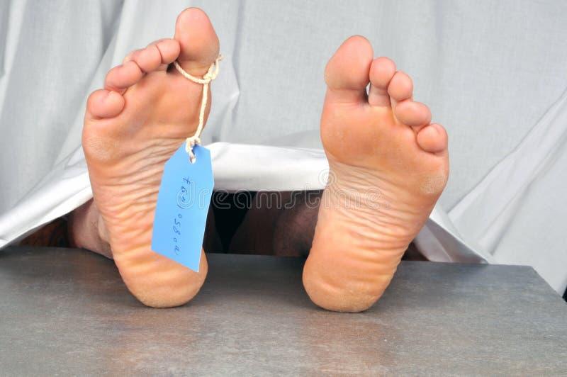 Труп с биркой на пальце ноги стоковые изображения