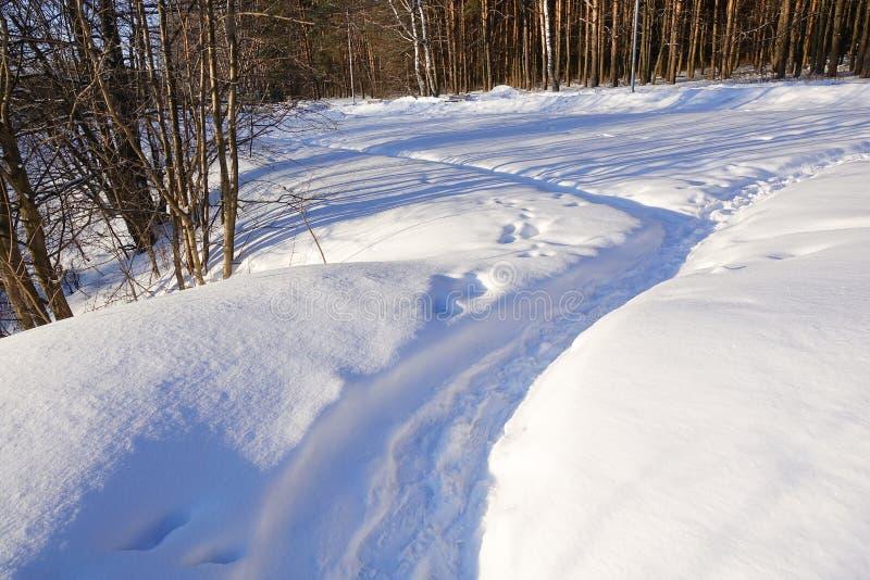 Тропа на снеге во дне леса зимы солнечном зима белизны снежинок предпосылки голубая стоковая фотография