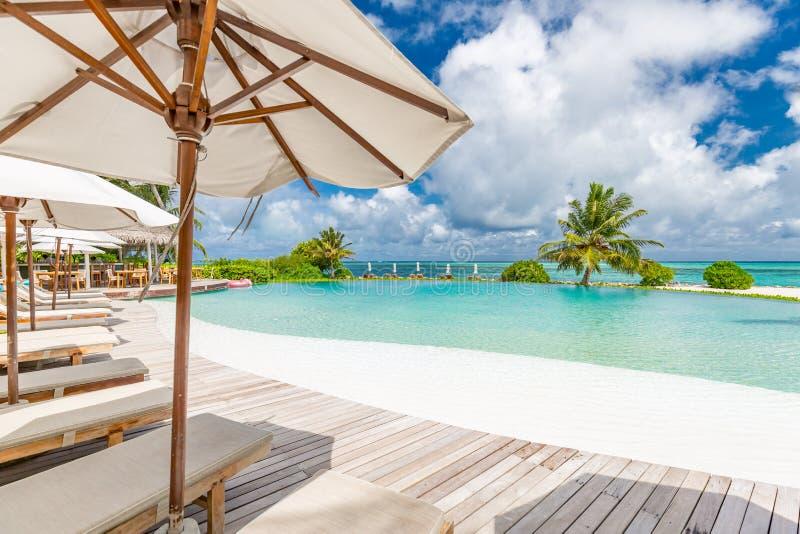 Тропические бассейн курорта и бар кафа около пляжа стоковые фото