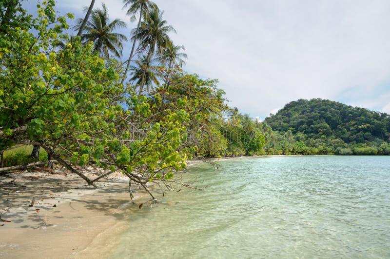 Тропический песчаный пляж на острове Chang Koh, Таиланде стоковые изображения rf