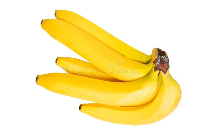 тропическое изолированное плодоовощ Пук крупного плана вкусных зрелых бананов изолированных на белой предпосылке лента измерения  стоковые фотографии rf