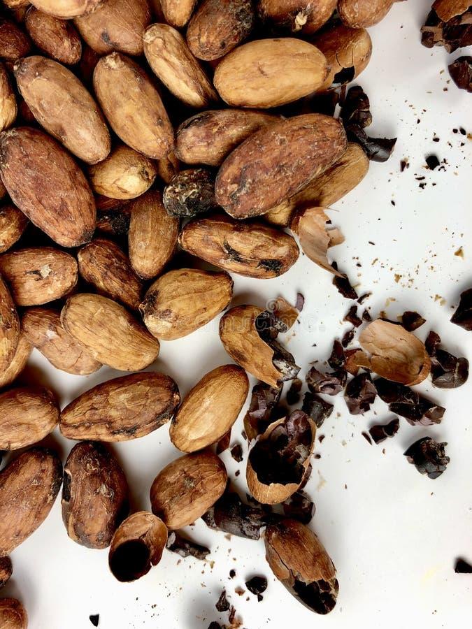 Фасоли и nibs какао стоковое фото rf