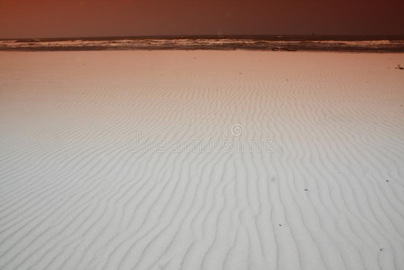 Фото sufr и бечевника на пляже стоковое фото rf