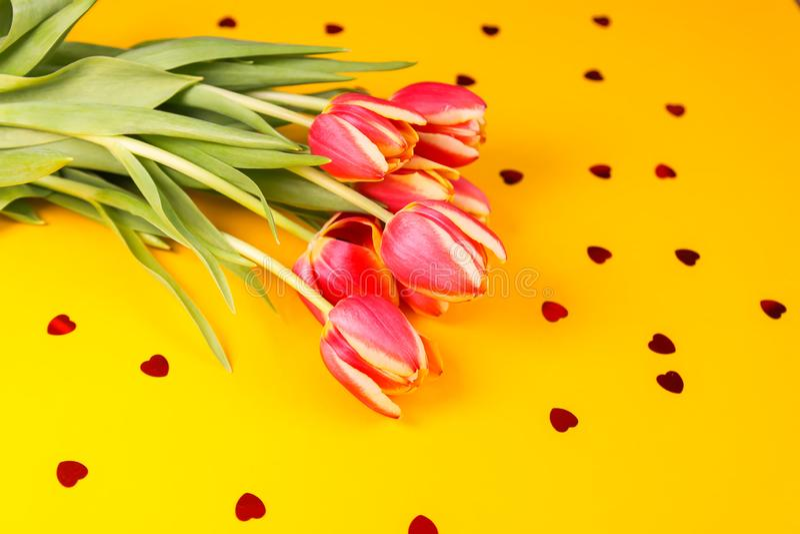 Цветки тюльпана весны красивые на желтой предпосылке стоковое изображение