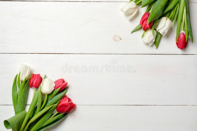 Цветки тюльпанов на белой деревянной предпосылке Взгляд сверху, рамка, граница, угол Поздравительная открытка на день женщины, де стоковое фото rf