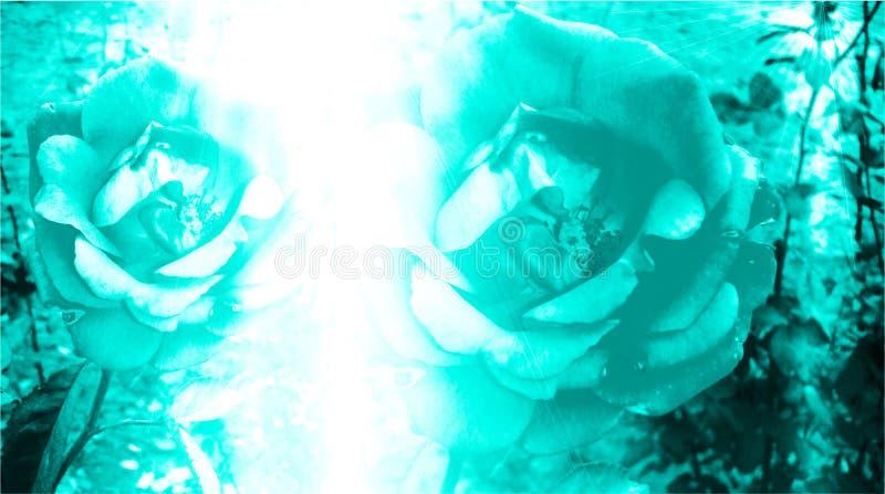 Цвет бирюзы затеняемый и запачкать с компьютером светового эффекта произвел флористические фоновое изображение и дизайн обоев стоковое фото