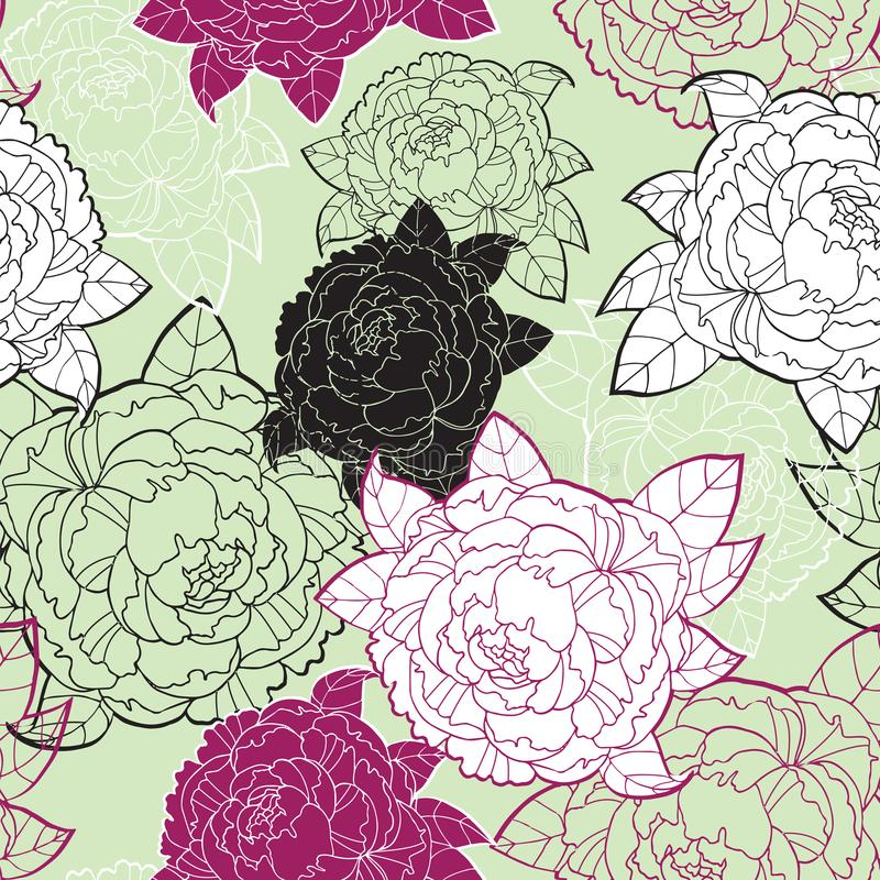 Цветок пиона картины вектора безшовный, иллюстрация руки вычерченная флористическая иллюстрация штока