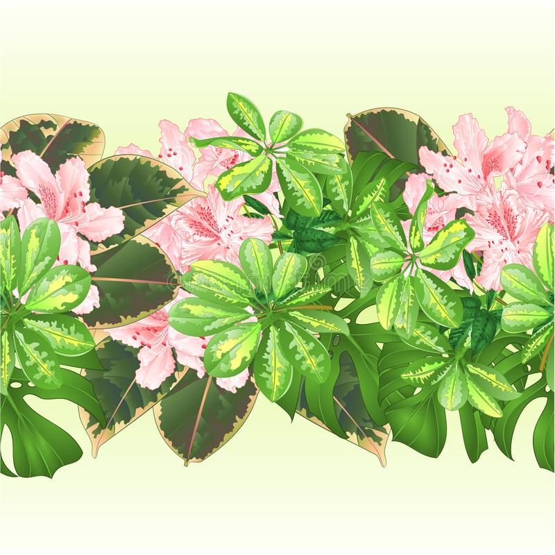 Цветочная композиция цветков тропической предпосылки границы безшовной тропическая, с красивым светом - розовым рододендроном, Sc иллюстрация вектора