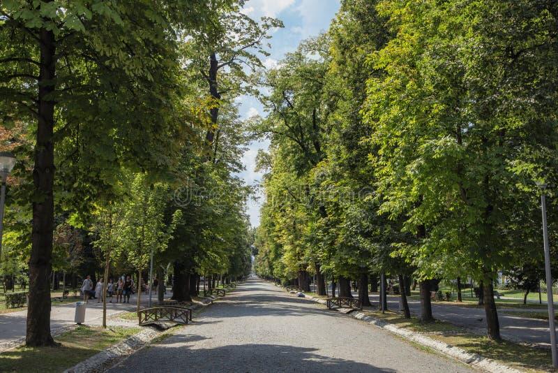 Центральный парк, изображение 21-ого августа 2018 в cluj-Napoca стоковое фото rf
