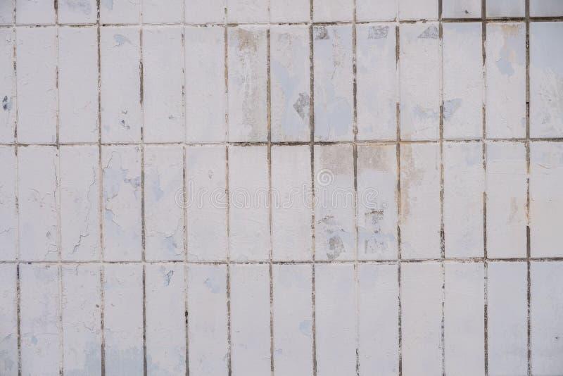 Часть наружной стены, выровнянная с белыми керамическими плитками Текстура, абстрактная предпосылка поверхности стоковые изображения
