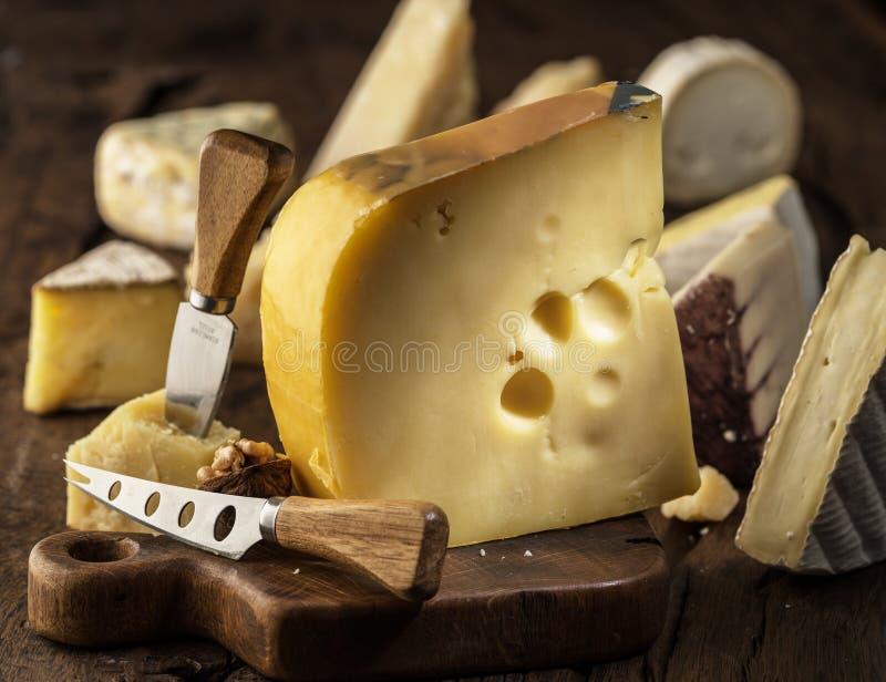Часть сыра Maasdam молока коровы на деревянной доске Ряд сыров на предпосылке стоковые фото